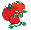 Cover photo for North Carolina Tomato Growers Association