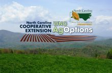 Cover photo for 2021 WNC AgOptions Grant Cycle Now Open