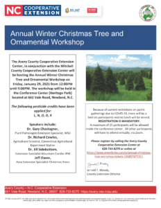 Cover photo for Annual Christmas Tree and Ornamental Workshop