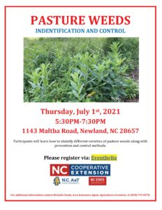 Cover photo for Pasture Weeds Identification and Control Workshop
